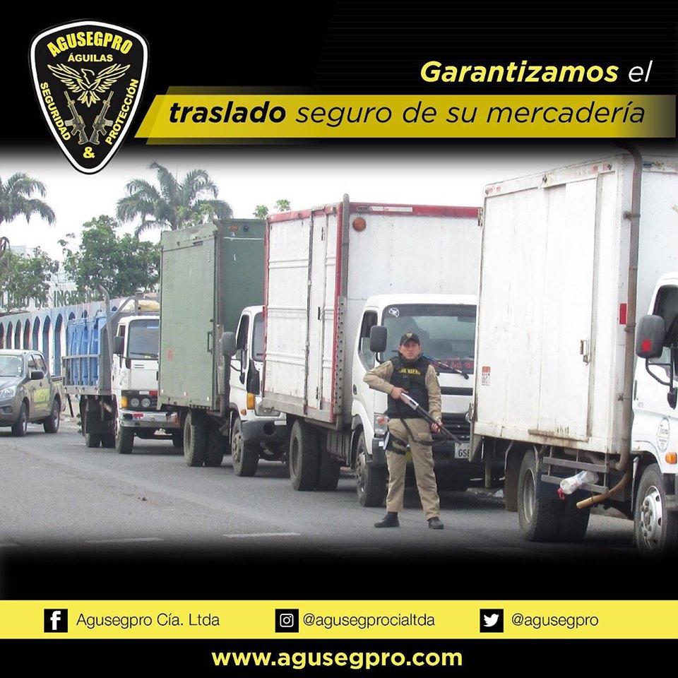 Vigilancia y protección de bienes